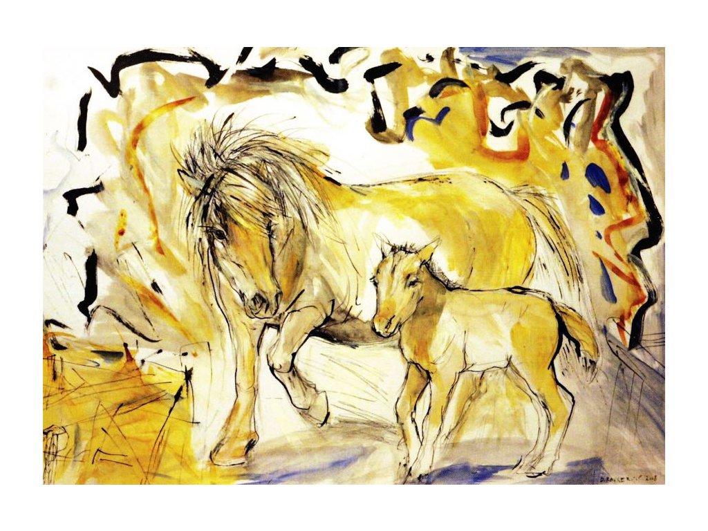 Pohlednice koně 5