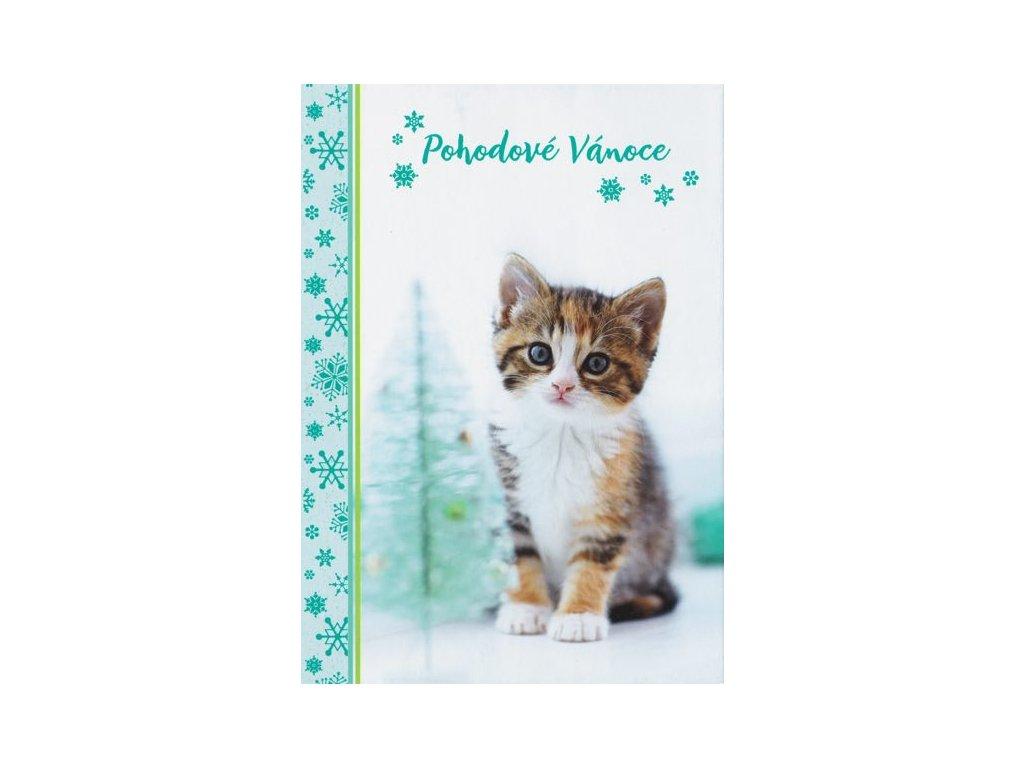 Pohlednice Vánoční s koťátkem