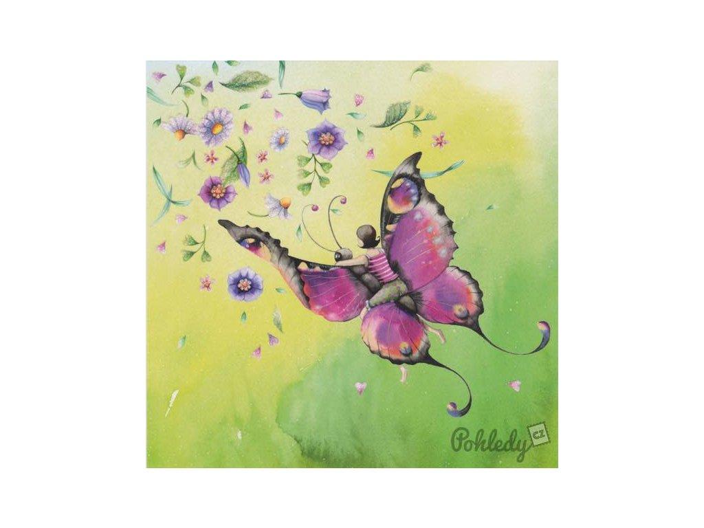 Pohlednice Motýlí