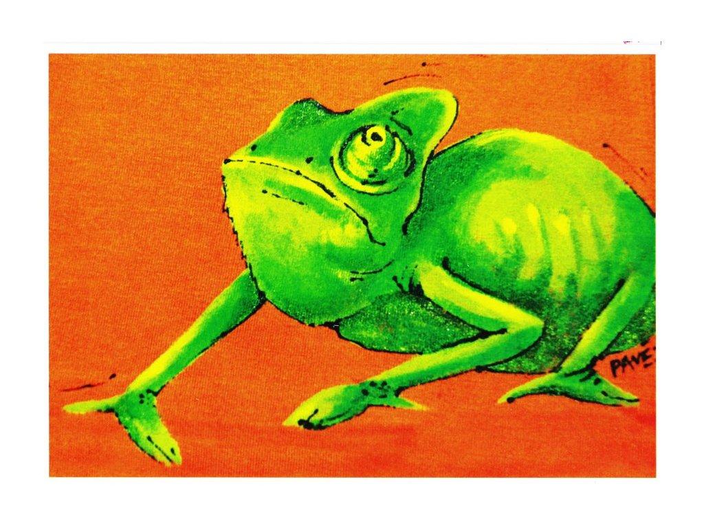 Pohlednice Chameleon Vasil