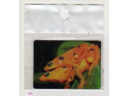 3D magnet žabky