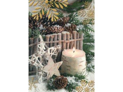 Pohlednice Vánoční hvězda
