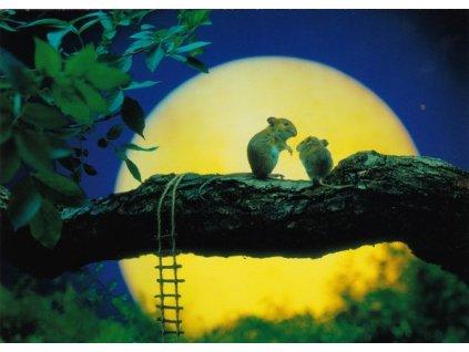 Pohlednice Myšky při měsíčku