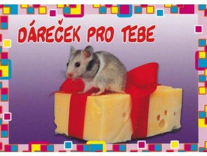 Pohlednice Myška s dárkem