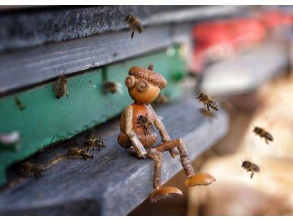 Pohlednice Dubánek včelař