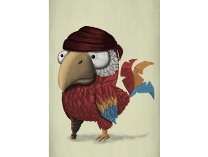 Pohlednice Mědvěd Wrr - Papoušek pirát