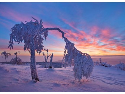Pohlednice Děčínský Sněžník