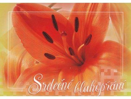 Pohlednice Blahopřání tulipán 4