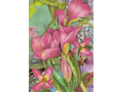 Pohlednice Květinky 2
