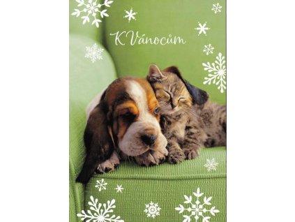 Pohlednice vánoční kotě a štěně