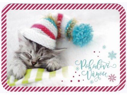 Pohlednice Vánoční kotě