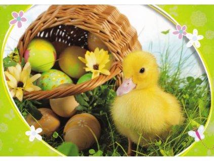 Pohlednice Velikonoční káčátko 12