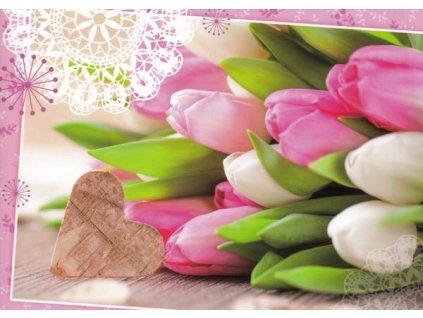 Pohlednice Tulipány 2