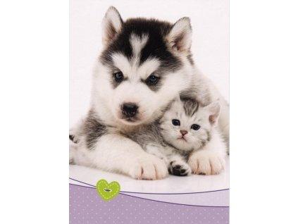 Pohledncie Štěně s koťátkem
