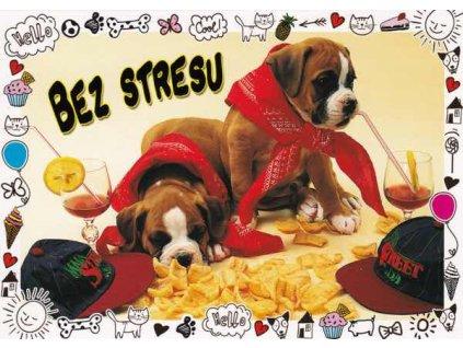Pohlednice Bez stresu - pejsci