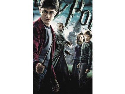 Pohlednice Harry Potter 63