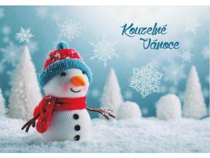 Pohlednice Kouzelné Vánoce