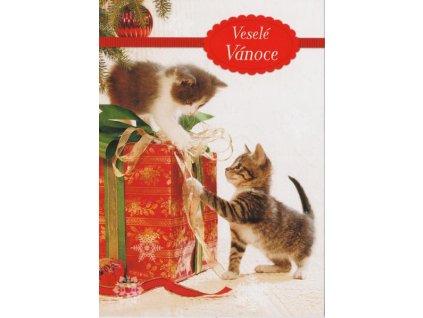 Pohlednice Vánoční koťátka