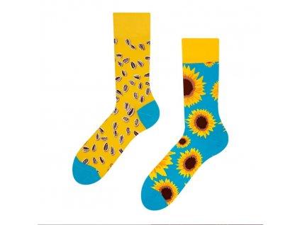 gmrs027 slunecnice ponozky dedoles