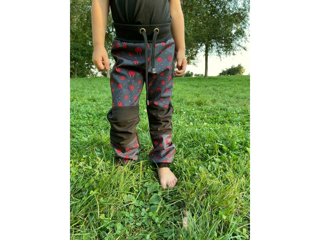 Dětské softshellové kalhoty - berušky