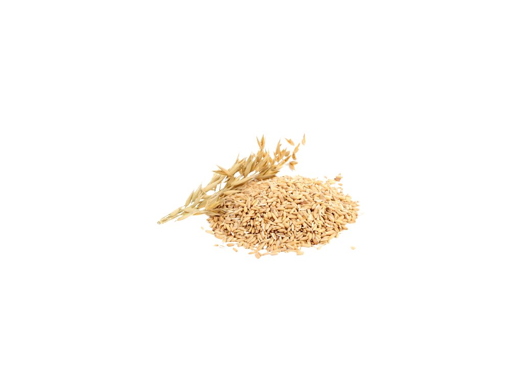 Oats PNG Image Background