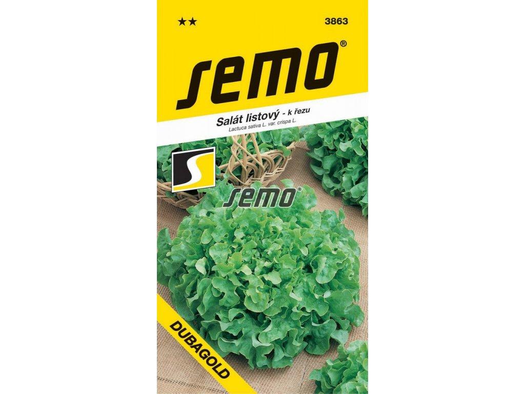 3863 semo zelenina salat listovy dubagold