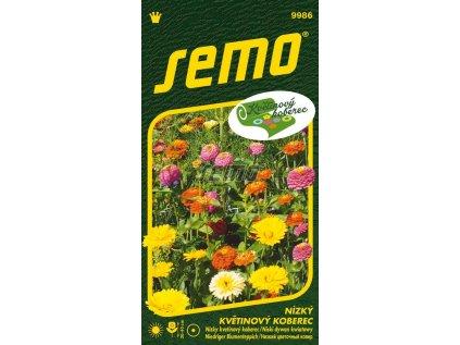 9986 semo kvetiny letnicky nizky kvetinovy koberec