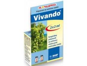 VIVANDO