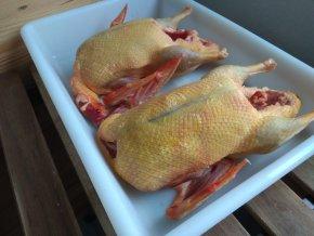 Domácí kachna 1,5 kg -  EKOSTATEK VLKANEČ