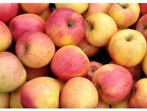 Jablíčka 2,5kg - sady Bílé Podolí
