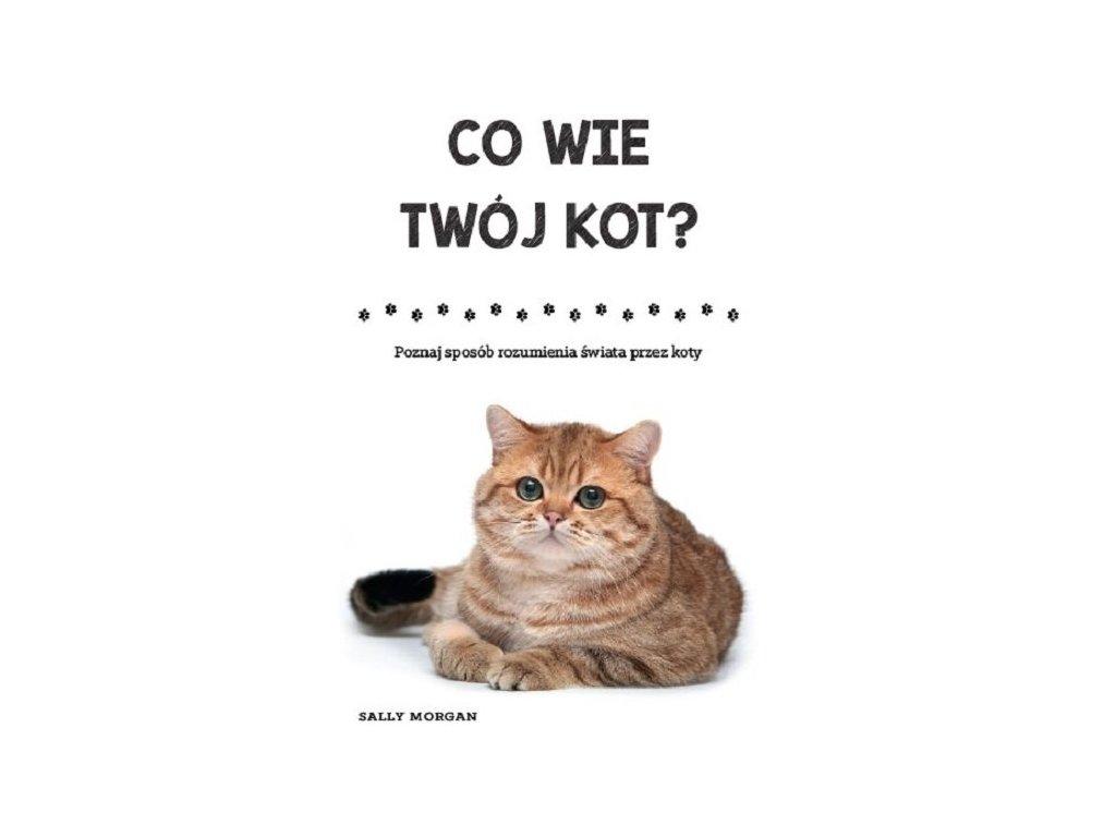 Co wie Twój kot?