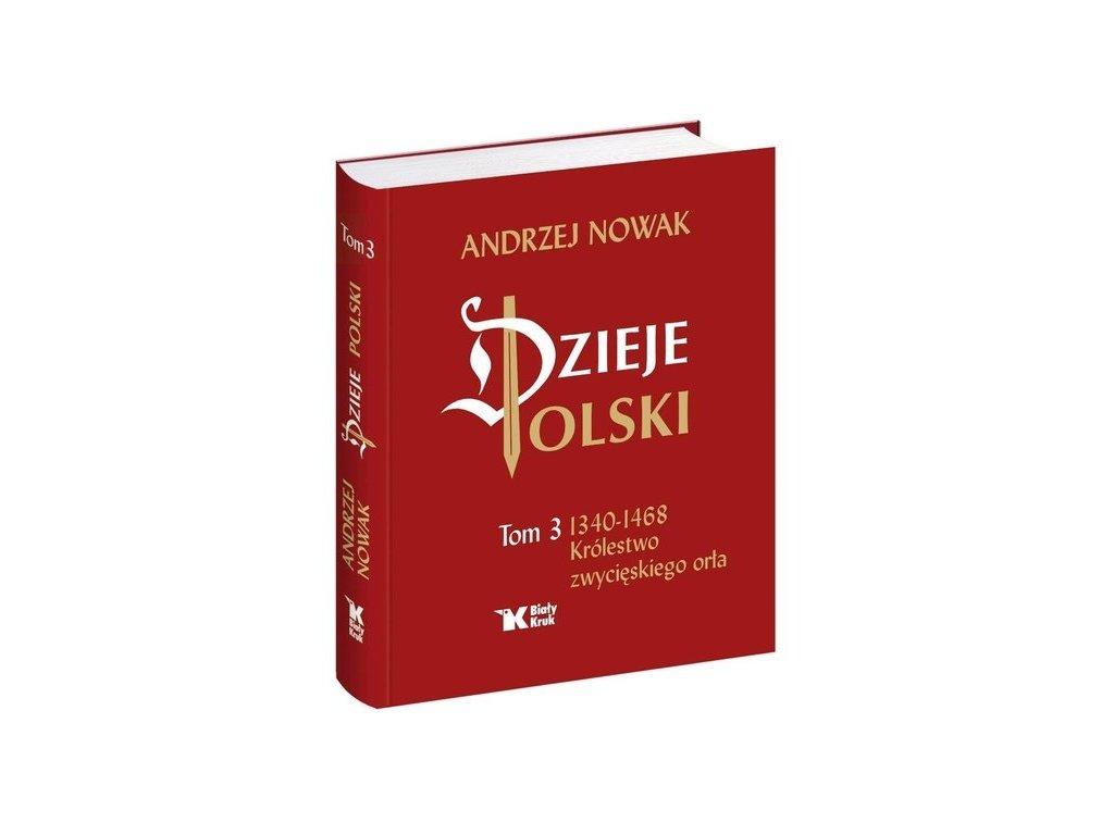 Dzieje Polski Tom 3