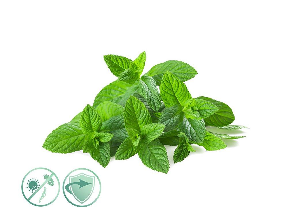 dezinfekcny aroma olej mint fresh