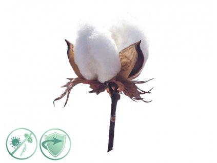 dezinfekcny aroma olej soft cotton