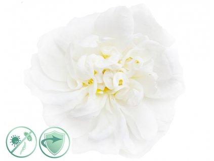 dezinfekcny aroma olej white flower