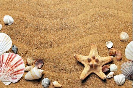 Mořské a vodní dekorace