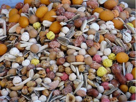 Semínka a vlákniny