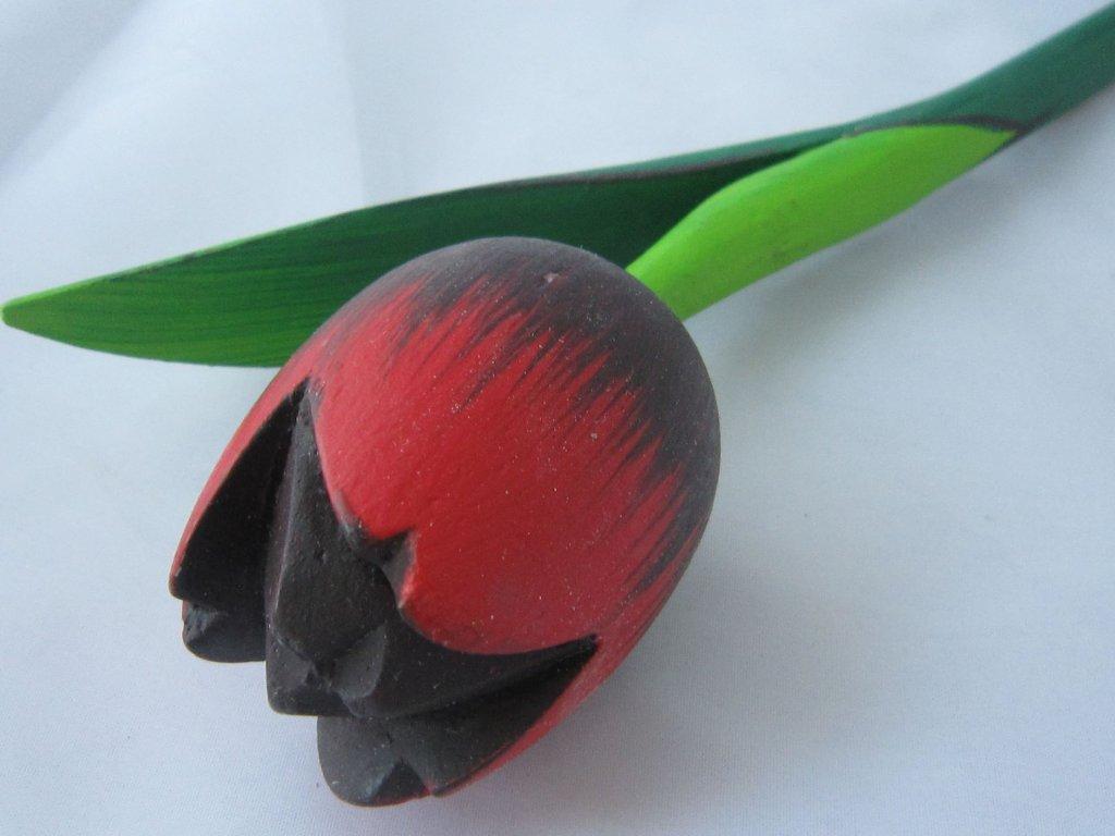 0004910 dreveny tulipan cerno cerveno cerny