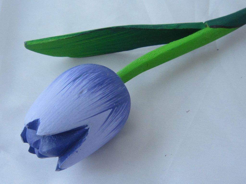 0004898 dreveny tulipan modro smolkovo modry