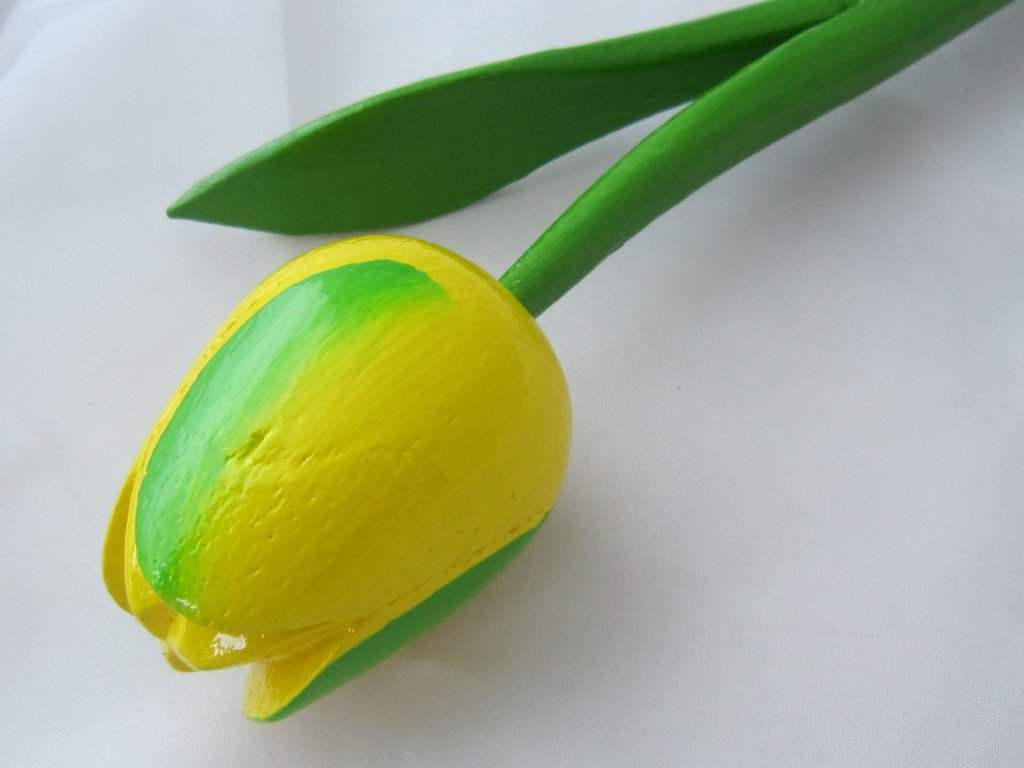 0004850 dreveny tulipan zeleno zluty s prouzkem