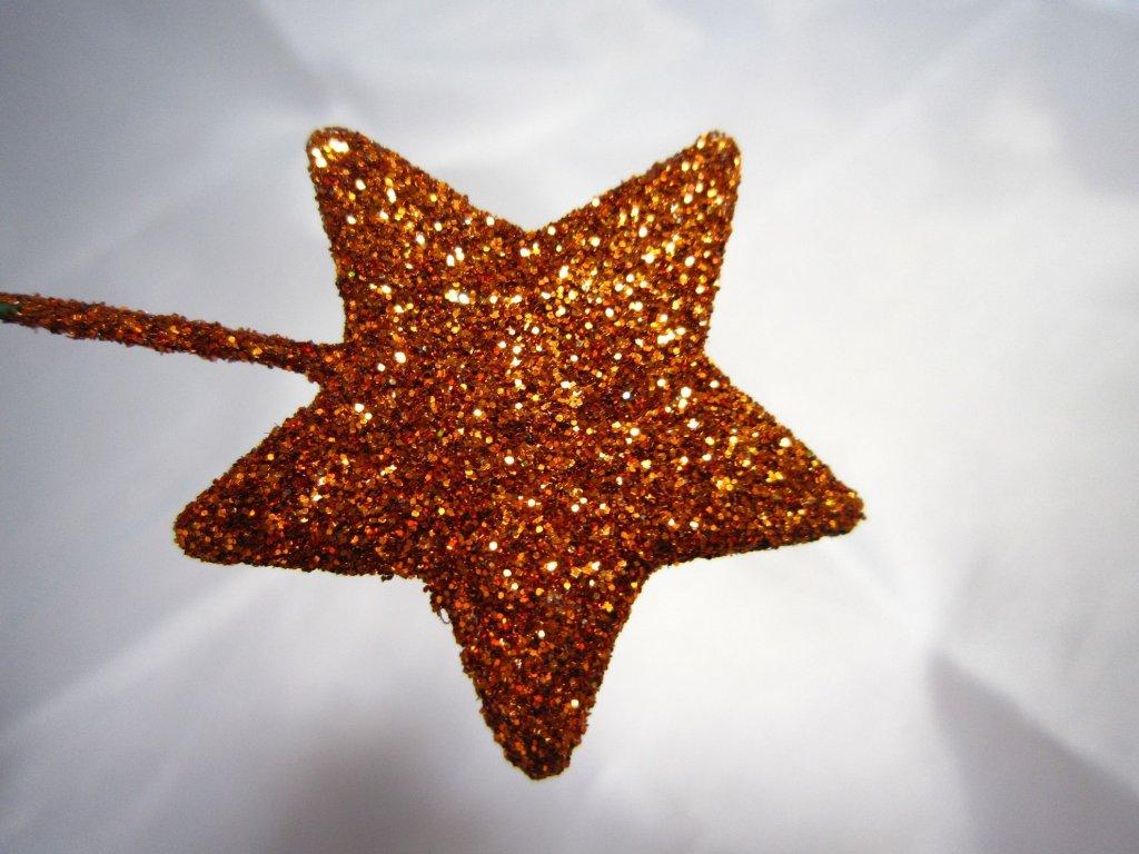 0004054 hvezdicka zapich medena