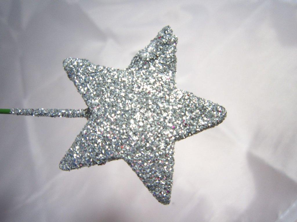 0004070 hvezdicka zapich stribrna