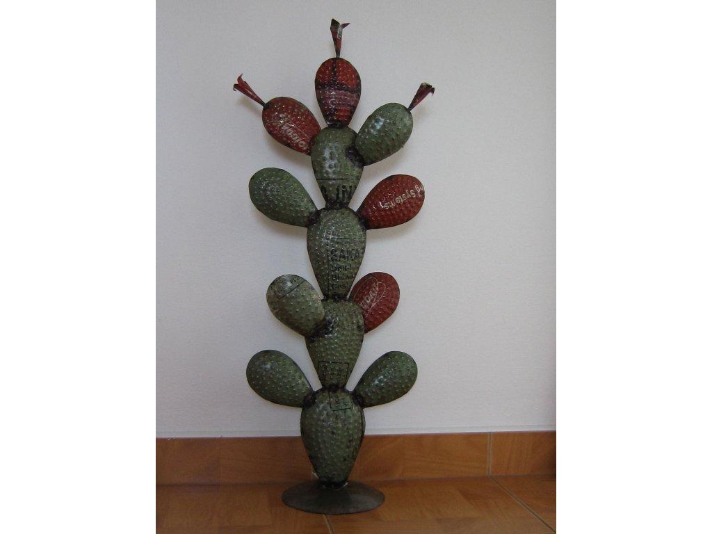 0006338 kaktus plechovy stredni