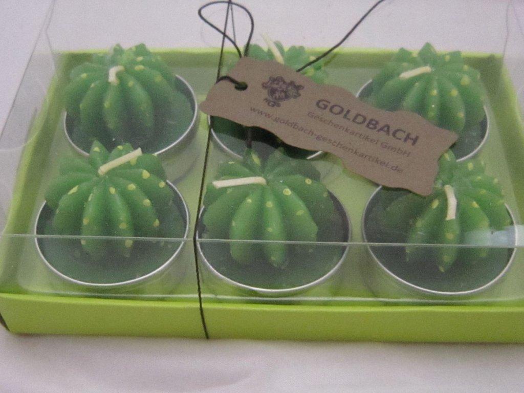 0007040 kaktusove svicky 6 ks