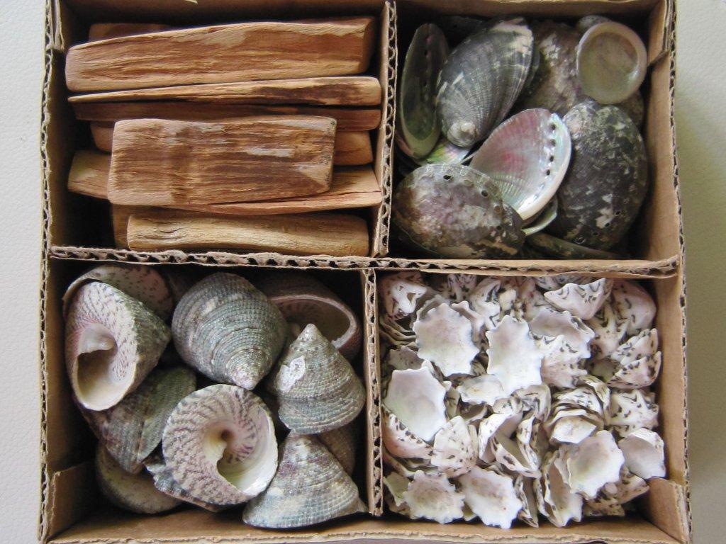0011575 musle a drevo sortiment 4 druhu