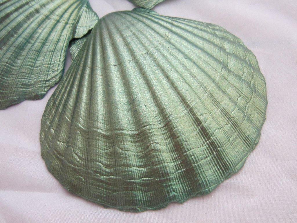 0009979 musle shell green 1 ks