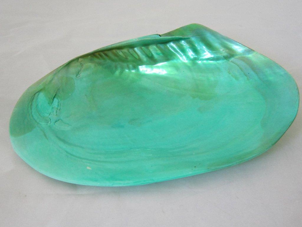 0010370 musle sladkovodni tyrkysova zelena