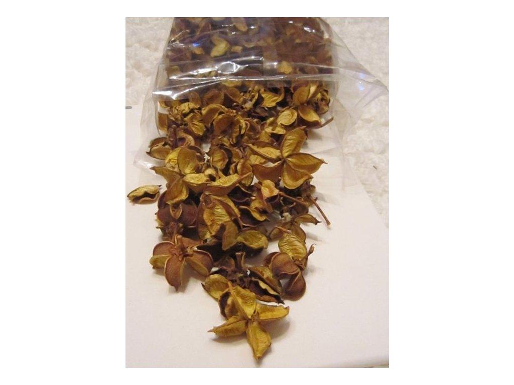 0005736 pukle plody zlute 50 g