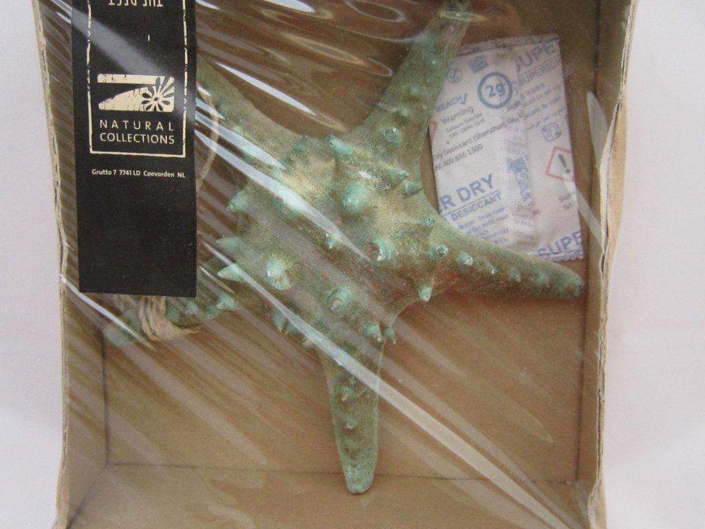 0006862 starfish hvezdice zelenohneda zaves