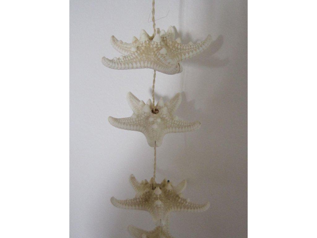 0010385 starfish zaves 70 cm